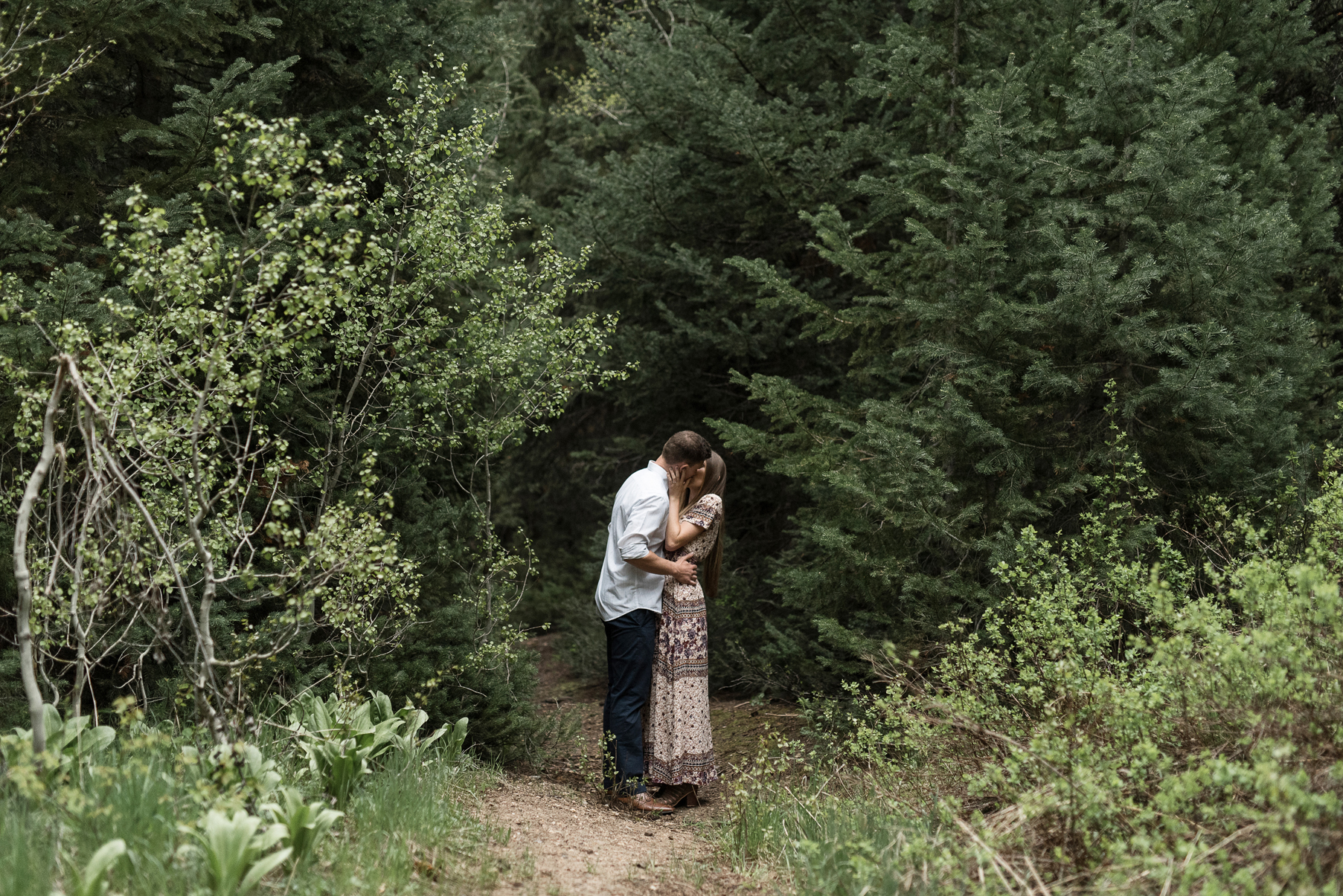 engagements in the woods big cottonwood canyon