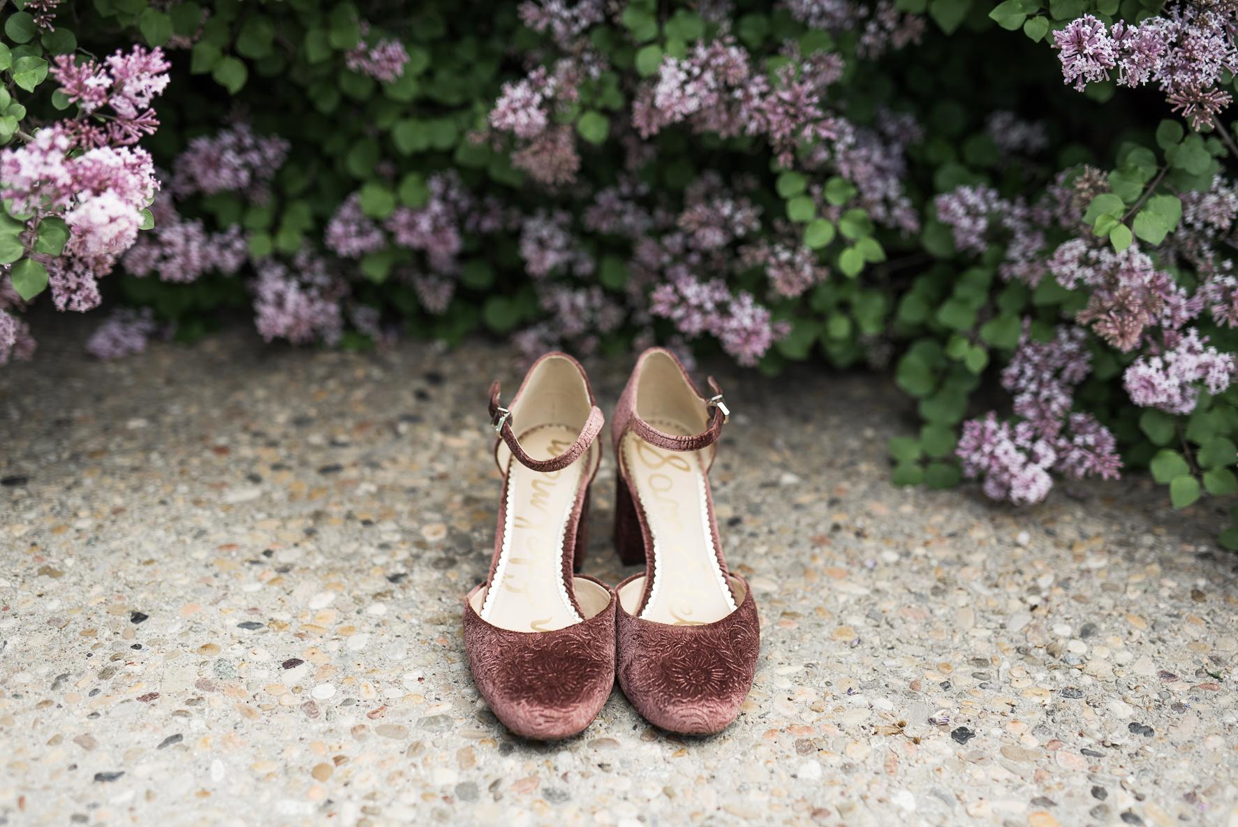 Pink velvet shoes at Red Butte Gardens | Elisha Braithwaite Photography