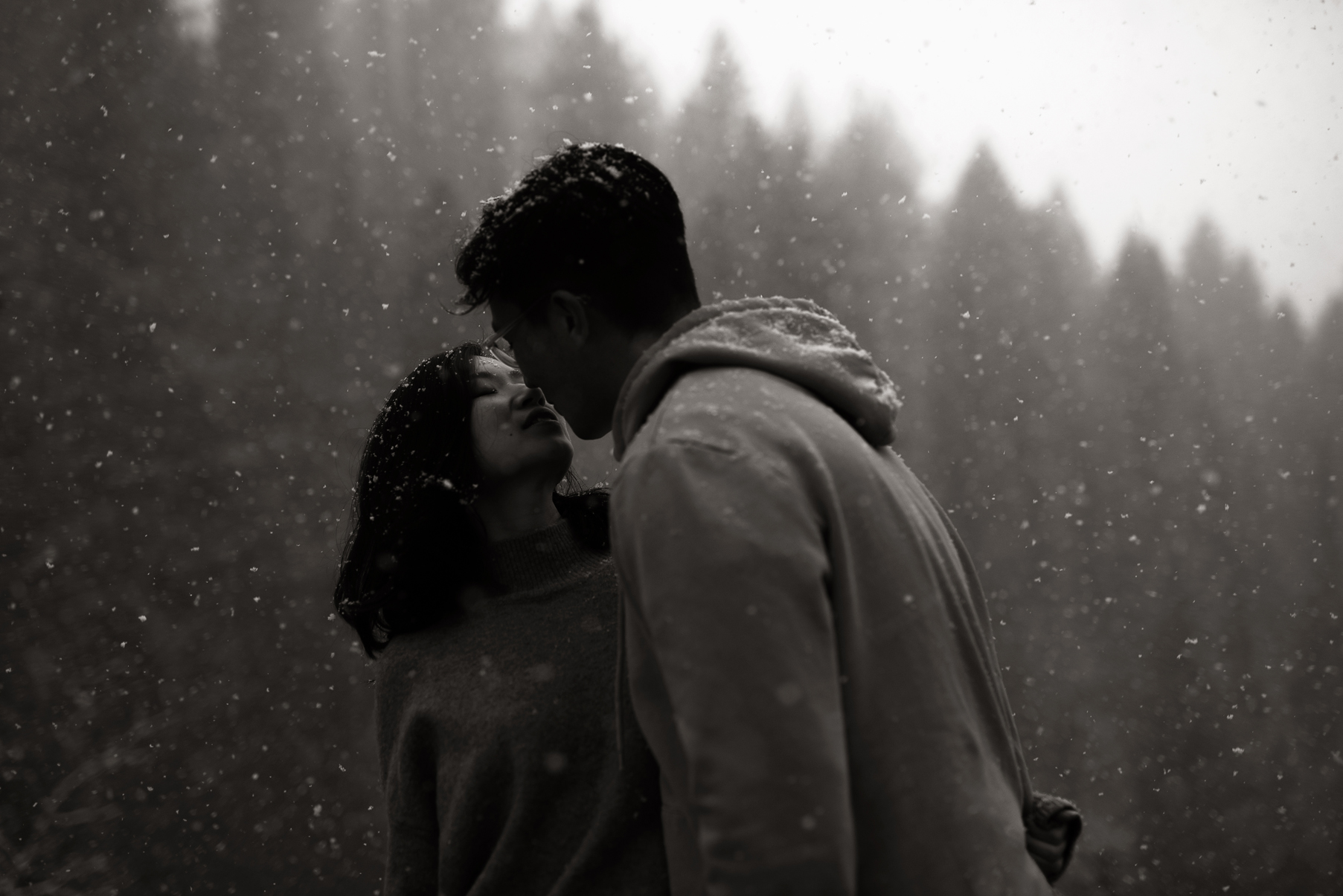 moody portrait of couple kissing in the snow