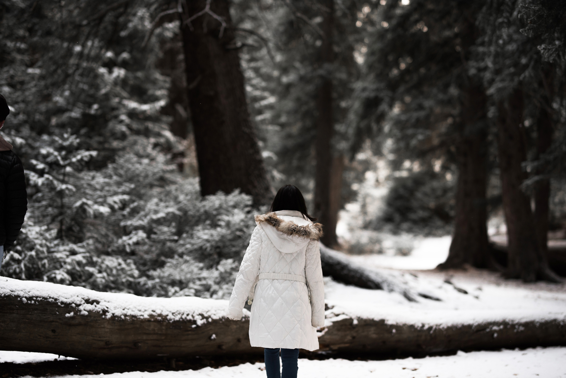 girl walking through a snowy clearing