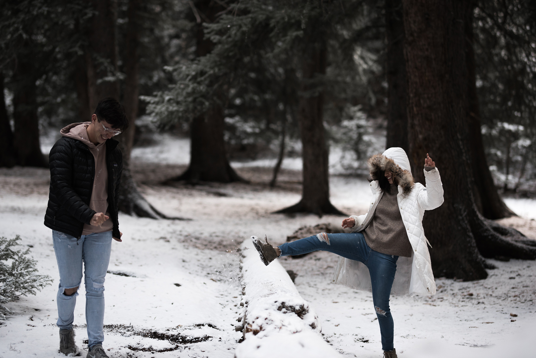 snowball fight in the mountains