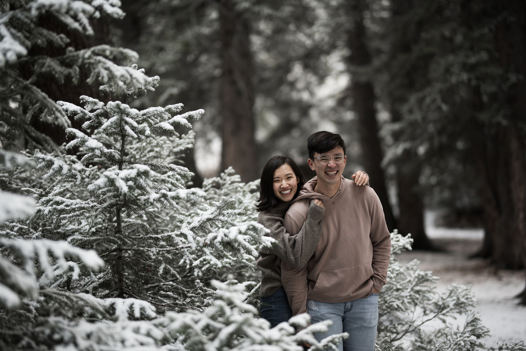 happy couple in a snowy tree