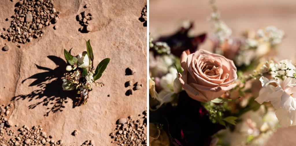 Flowers on desert red rock